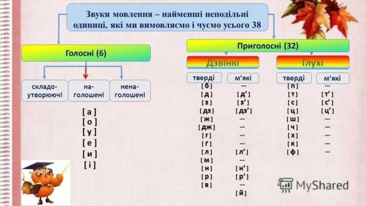 Голосні та приголосні звуки української мови