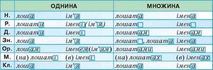 Правопис відмінкових закінчень іменників і прикметників