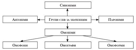 Омоніми, синоніми, антоніми, пароніми